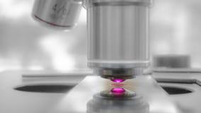 Eseguendo un esperimento di osservazione facendo uso da un di un microscopio sostenuto da laser immagine stock libera da diritti