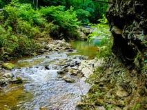 Eseguire il fiume di N.B.: Fotografia Stock Libera da Diritti