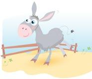 Esel auf Bauernhof Lizenzfreie Stockfotos