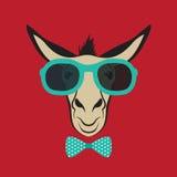 Esel, der blaue Gläser trägt Lizenzfreies Stockfoto