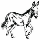 Esel-stilisierte Zeichnungs-Illustration stock abbildung