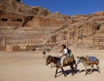Eselfahrer in der alten Stadt von PETRA, Jordanien stockbilder