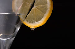 Esempio del cocktail Immagine Stock