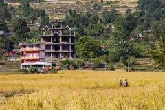Esempio di architettura nepalese Fotografia Stock Libera da Diritti