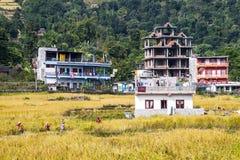 Esempio di architettura nepalese Immagine Stock