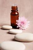 esenci kwiatów oleju menchie Fotografia Stock