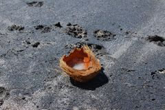 Esencia abandonada del coco foto de archivo libre de regalías