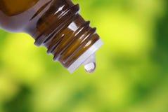 Esencia herbaria Imagen de archivo libre de regalías