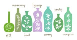 Esencial aromático de las hierbas Imagenes de archivo