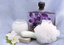 Esencial del baño y de la belleza Foto de archivo libre de regalías