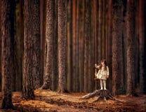Esenya在森林里 库存照片
