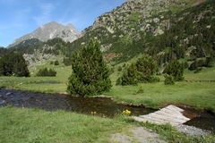 Esera river in Posets-Maladeta Royalty Free Stock Photography