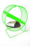 Esercitazione del mouse Fotografie Stock Libere da Diritti
