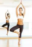 Esercitazione della donna. Fotografie Stock
