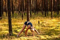 Esercizi di forma fisica nella foresta immagine stock