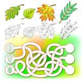 Esercizi per i bambini piccoli - necessità di colorare le foglie e disegnare i nuovi nei cerchi pertinenti Fotografie Stock