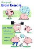 Esercizio del cervello Immagine Stock Libera da Diritti
