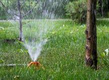 Esercizio dell'impianto di irrigazione nel parco Immagini Stock Libere da Diritti