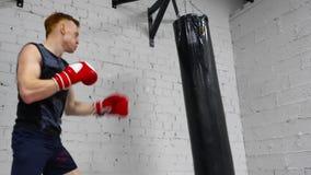 Esercizio della borsa della perforazione di allenamento di sport del combattente del pugile stock footage