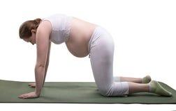 Esercizio incinto di sport e della giovane donna Fotografia Stock