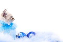 Esfera azul, decoração do ano novo imagens de stock royalty free