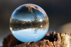 Esfera clara de quartzo na casca, rhytidome, lago refletindo, floresta, c?u imagem de stock royalty free