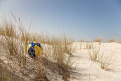 Esfera colorida na duna Fotografia de Stock Royalty Free