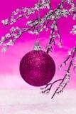 Esfera cor-de-rosa do Natal fotografia de stock royalty free