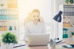 Esfera 3d diferente Retrato do advogado novo sério da senhora do negócio Imagens de Stock