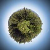 Esfera da natureza Fotografia de Stock Royalty Free