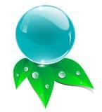 Esfera de cristal com folhas, ícone da ecologia Fotografia de Stock Royalty Free