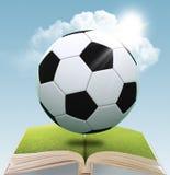 Esfera de futebol de couro imagens de stock