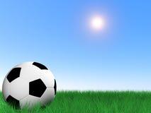 Esfera de futebol na grama Fotos de Stock Royalty Free