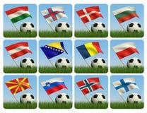 Esfera de futebol na grama e na bandeira ilustração do vetor