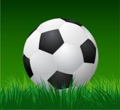 Esfera de futebol na grama verde Vetor Foto de Stock