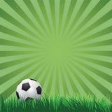 Esfera de futebol na grama verde Vetor Imagem de Stock