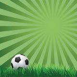 Esfera de futebol na grama verde Vetor Imagens de Stock