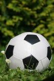 Esfera de futebol pequena Foto de Stock Royalty Free