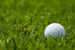 Esfera de golfe branca no fim do fairway acima Fotos de Stock
