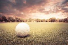 Esfera de golfe em um campo verde Foto de Stock Royalty Free