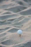 Esfera de golfe na areia Fotos de Stock Royalty Free