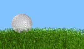Esfera de golfe na grama Imagem de Stock