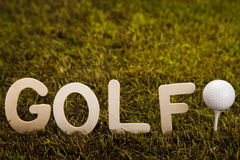 Esfera de golfe na grama verde Fotos de Stock