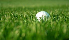 Esfera de golfe no áspero Fotografia de Stock