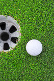 Esfera de golfe no bordo do copo Fotos de Stock