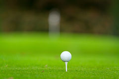 Esfera de golfe no campo de golfe bonito Imagem de Stock Royalty Free