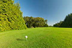 Esfera de golfe no curso perfeito Fotos de Stock Royalty Free