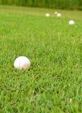 Esfera de golfe no tiro de grass Foto de Stock
