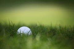 Esfera de golfe no tiro de grass Fotos de Stock Royalty Free