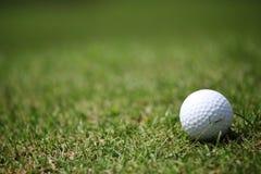 Esfera de golfe no tiro de grass Imagem de Stock Royalty Free